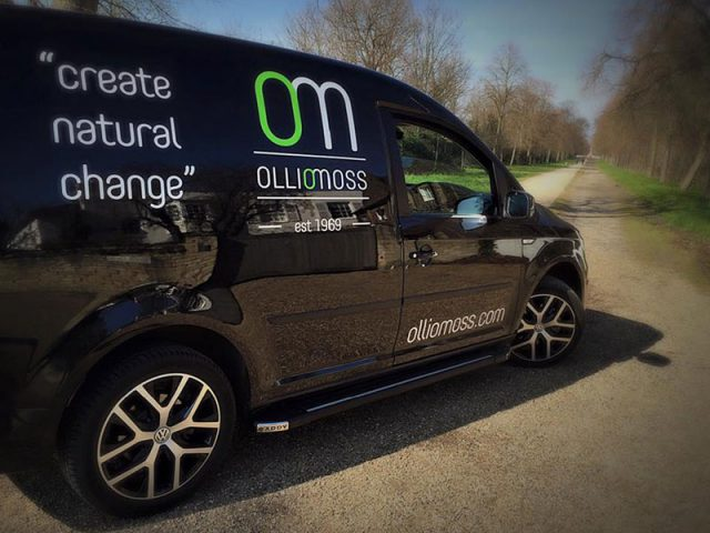van-graphics-design-ollio-moss