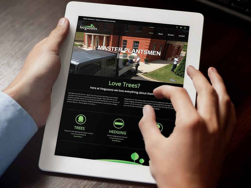 website-design-fergusons